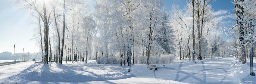 cnwc-newsletter-winter